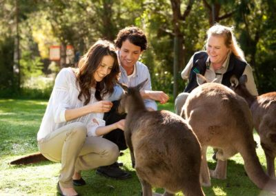 Couple with kangaroos at Healesville Sanctuary