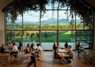 Dining at Domaine Chandon winery